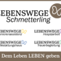 Smart Fair 2020: Lebenswege Schmetterling